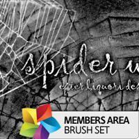 spiderwebsthumb200