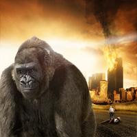 gorillaswakethumb200